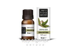 Flora secret олiя ефiрна евкалiптова 10мл