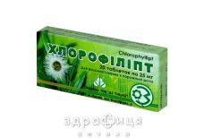 Хлорофиллипт таб 25мг №20 (10х2)